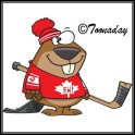 Beaver toonaday