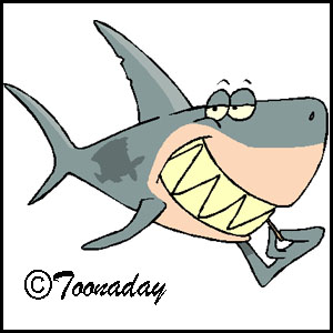 Toonaday shark