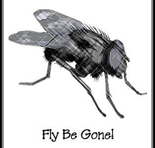 black and white line drawing fly