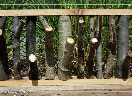 woodworking tree branch frame