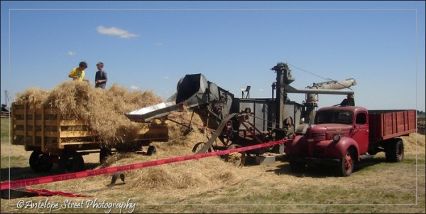 Alberta Irricana Pioneer Acres
