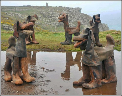 Rubber boot puppies or dogs