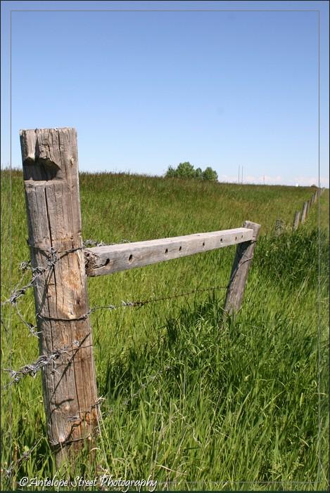 12-fence1