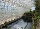 Biosphere 2, Oracle Arizona