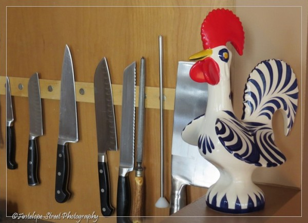552-rooster-portugal-27