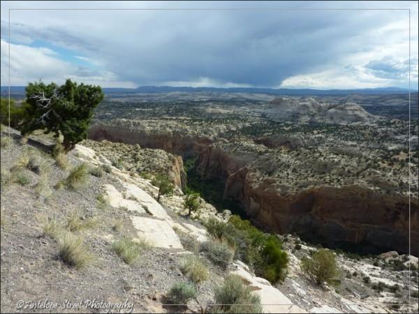 537 - Utah landscape-1