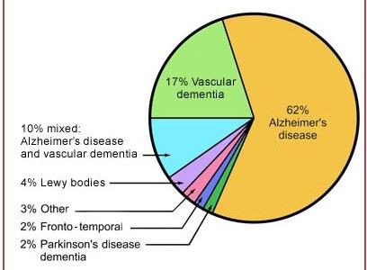 pie chart dementia