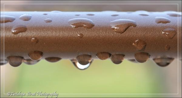 509-raindrops