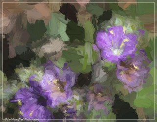 Topaz Studio Impasto Filter