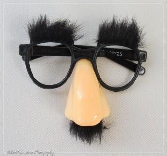 563-glasses2