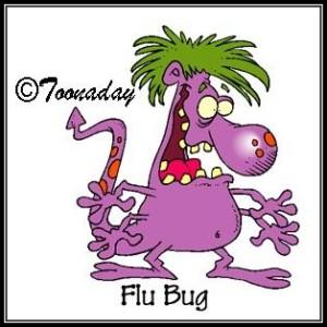 Toonaday flu bug
