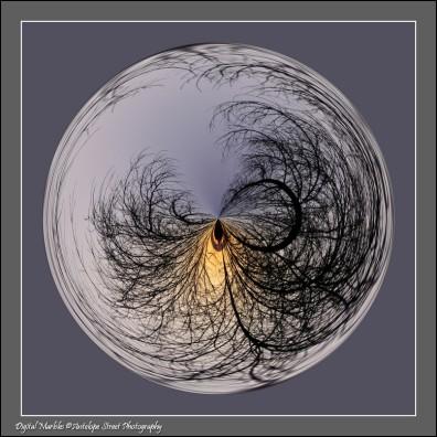 Sunrise trees marble