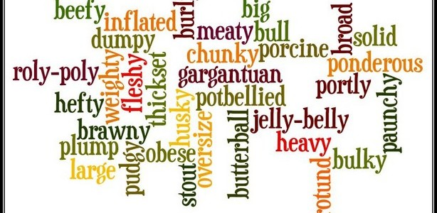 wordle fat synonyms