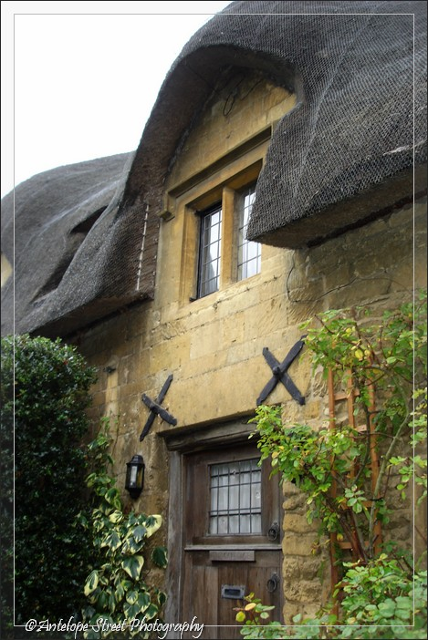 thatch roof house