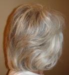 hair color gray arctic blonde