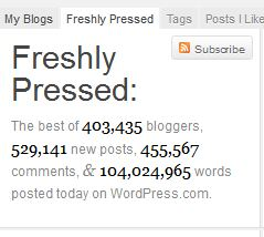 131 WordPress Freshly Pressed