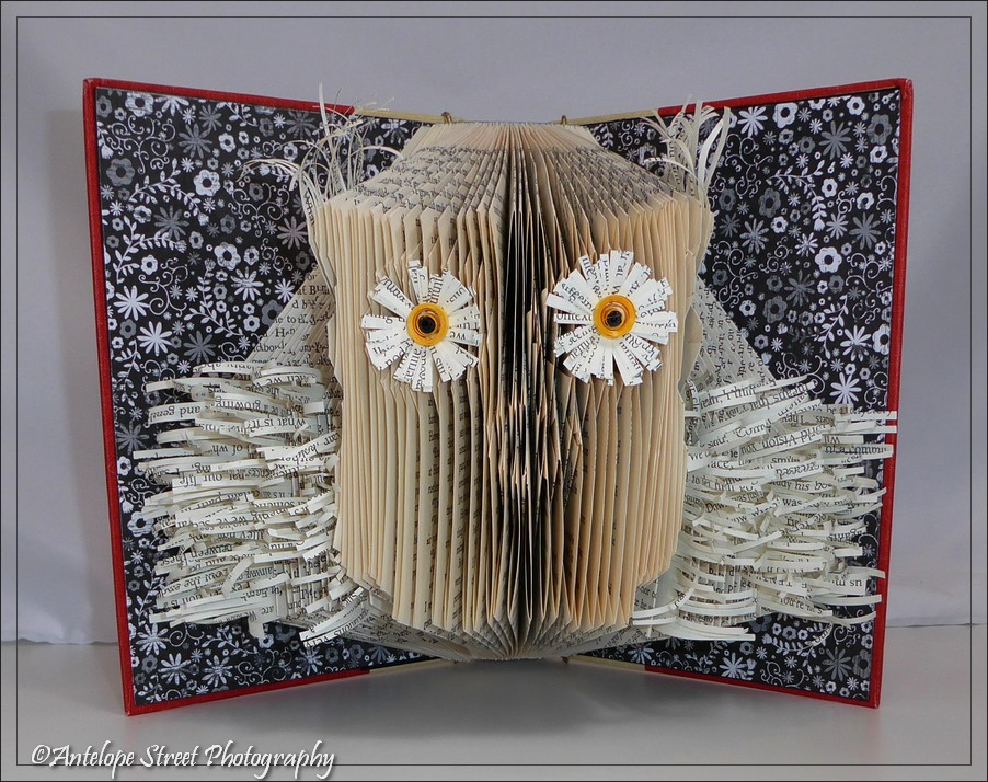 Literary Origami – Well, That's a HOOT!